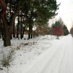 droga zasypana śniegiem